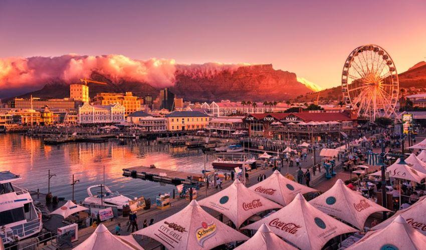 6 Petualangan Epik di Cape Town Bersama Anak